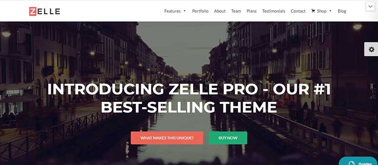 Zelle Pro, amazon affiliates theme