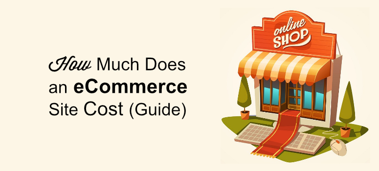 ecommerce site setup cost