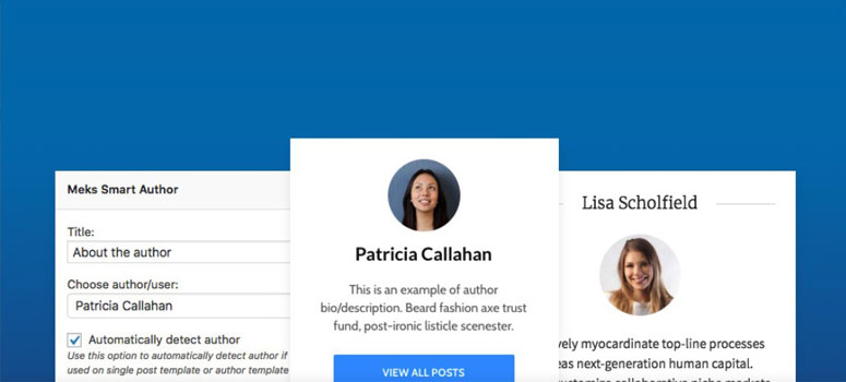 Smart Author Widget