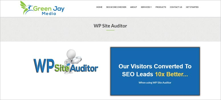 WP Site Auditor