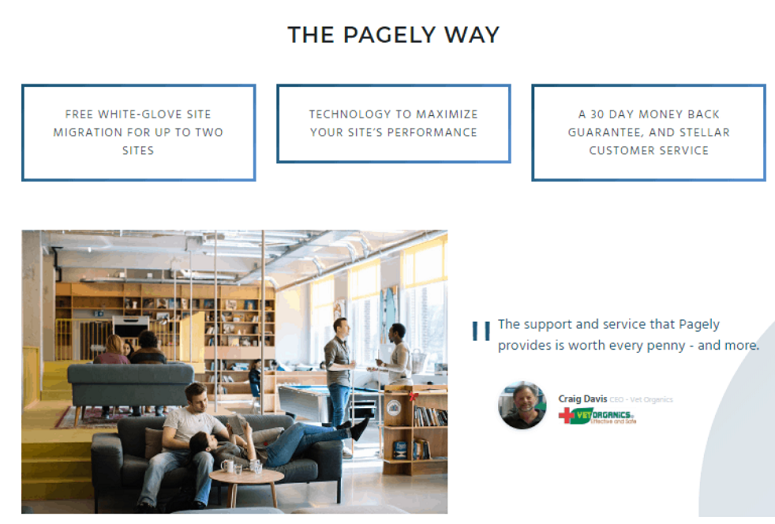 Pagely support