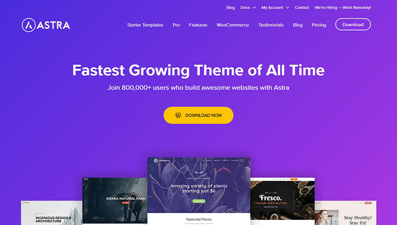 Astra theme, free ecommerce themes