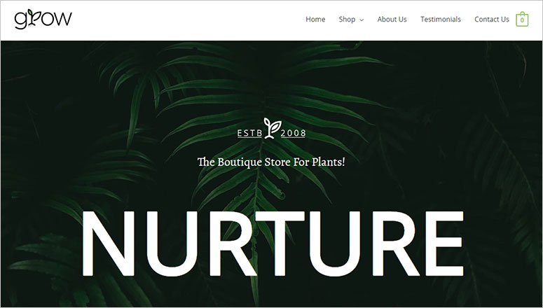 Astra Minimalist WordPress themes