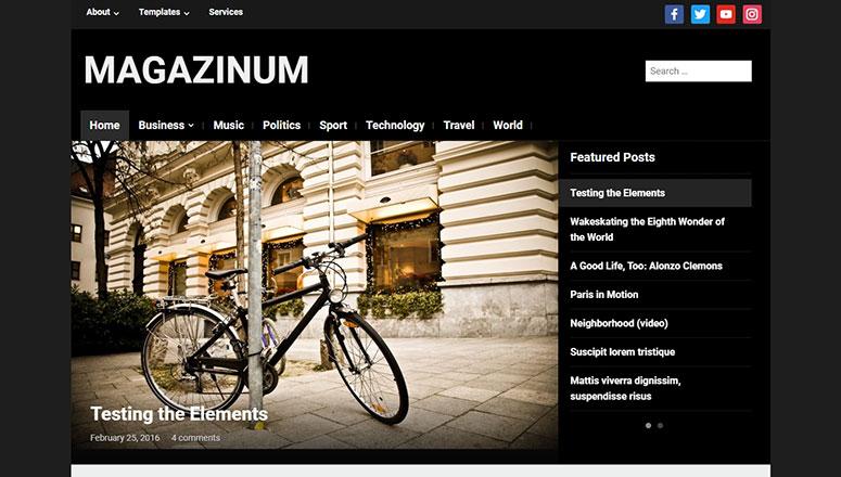 Magazinum Best WordPress Video Themes