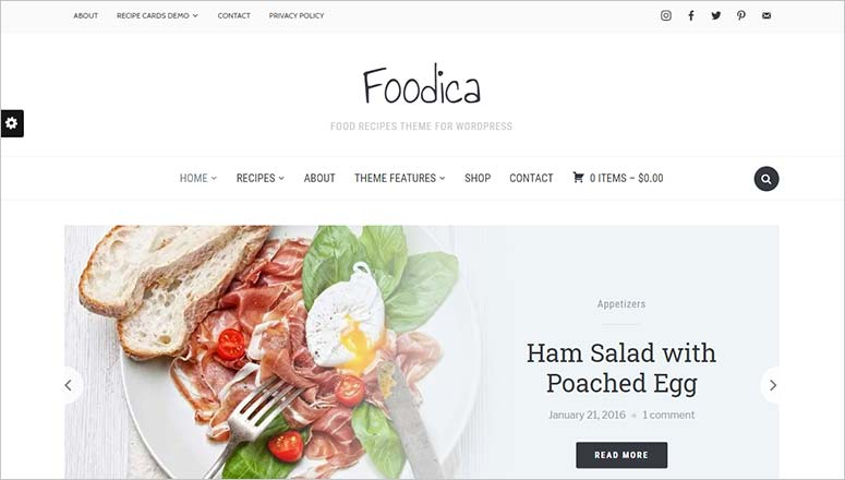 Foodica, seo theme