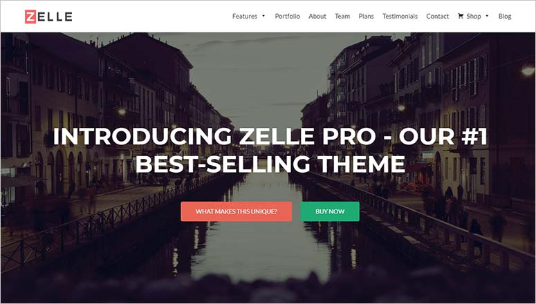 Zelle, seo optimized theme