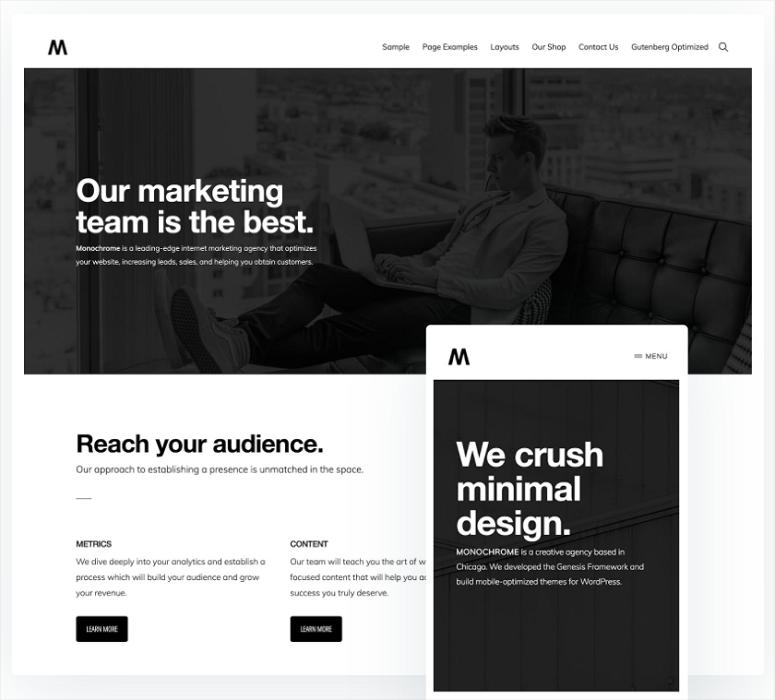 Monochrome Pro, wordpress themes for graphic designers