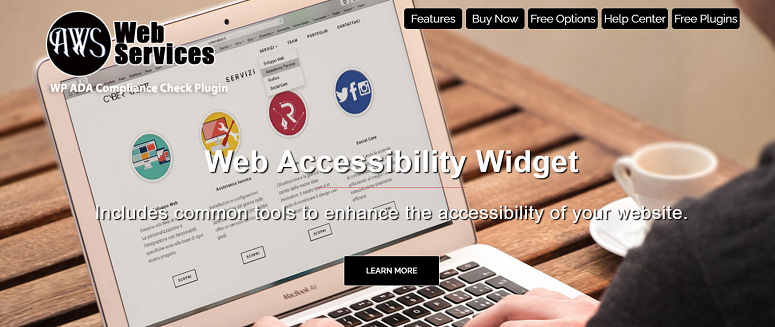 accessibility plugins