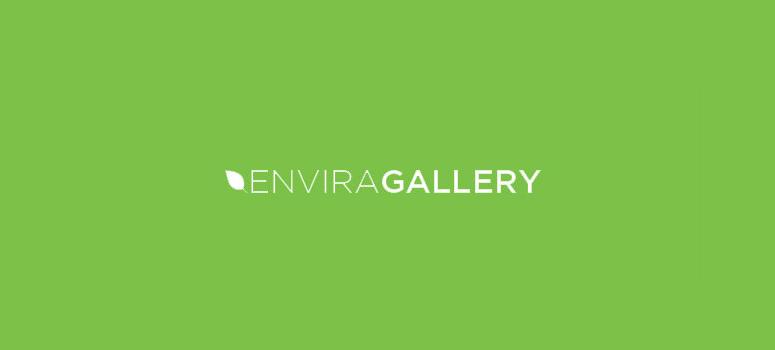 Envira Gallery WordPress Image Gallery Plugin - Black Friday Deal