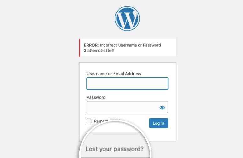Lost password in WordPress