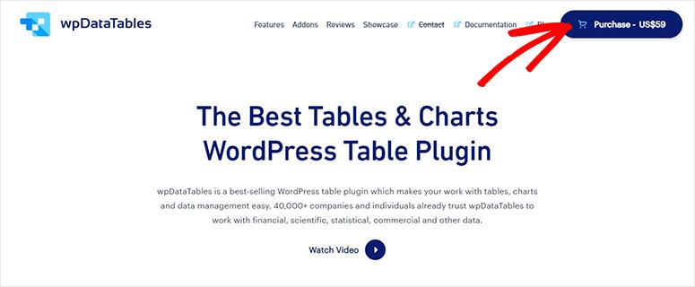 wpDataTables website