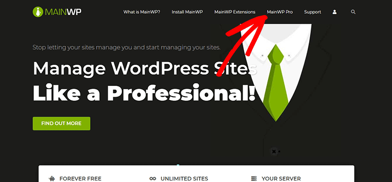 MainWP Pro