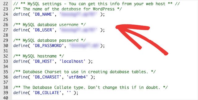 database details in wpconfig