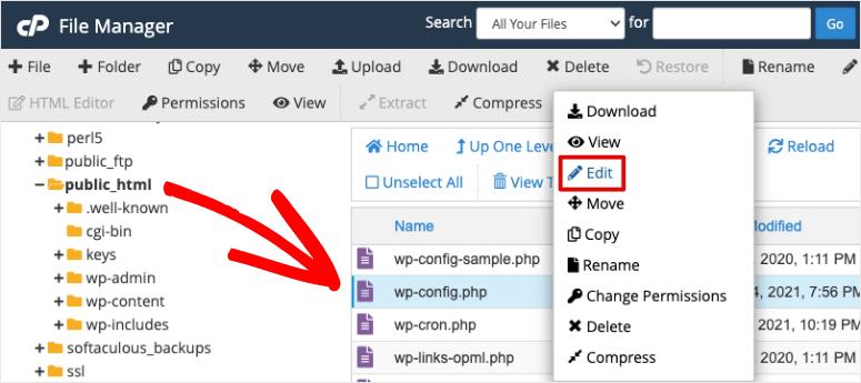 edit wpconfig file