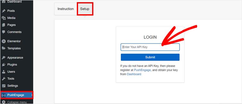 enter-api-keys-wordpress