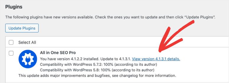view version details of update
