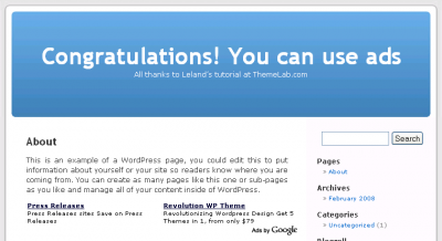 Congratulations!  You can now use ads with WordPress